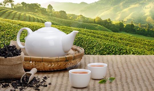 Japanische Teekanne